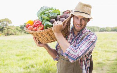 Come aprire un'azienda agricola di successo: la guida completa definitiva